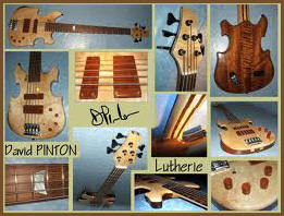 David PINTON Lutherie